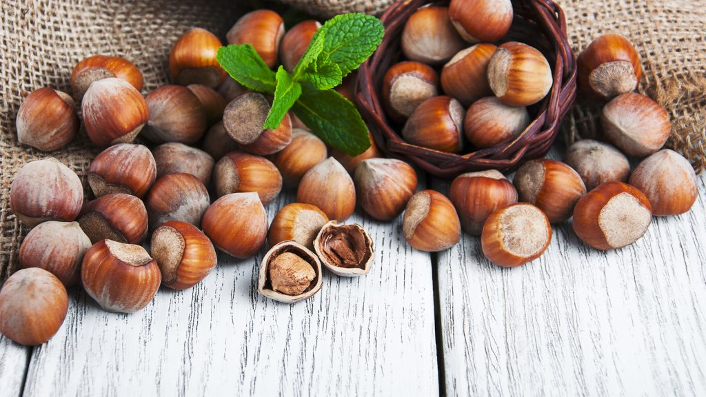 Not Enough Hazelnuts? Our Future Climate Points To Australia For New Cultivation